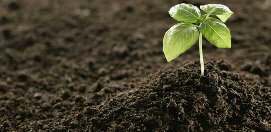 Fertilizer Custom Vibratory Lump Breaker – General Kinematics Case Study