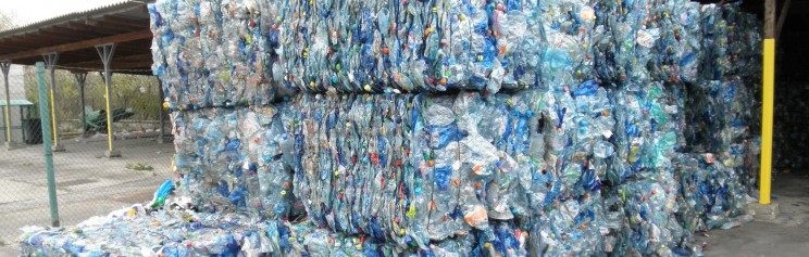 Study shows PET bottle recycling programs widely available