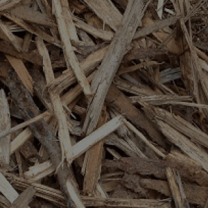 Forestry, Wood & Bio-Mass